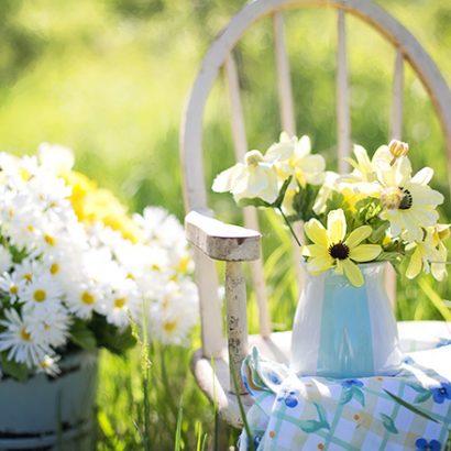 идеи за малка градина