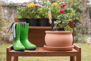 какво-да-свършите-в-градината-през-май