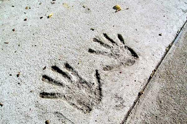 Отпечатък на ръце в бетон.